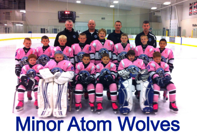 Wolves_MA_pink_team_pic.JPG